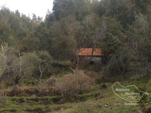 Terreno T6  Portugal, Ilha da Madeira, Funchal, Monte,